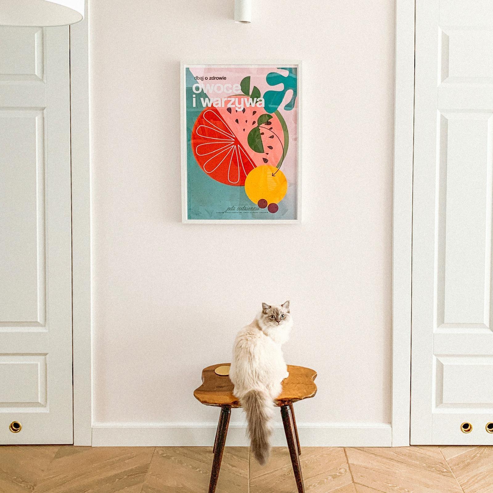 Mieszkanie modern vintage, Aleksandra Chmielowicz architekt wnętrz, projektowanie wnętrz Olkusz, projektowanie wnętrz Mikołów, projektowanie wnętrz Tychy